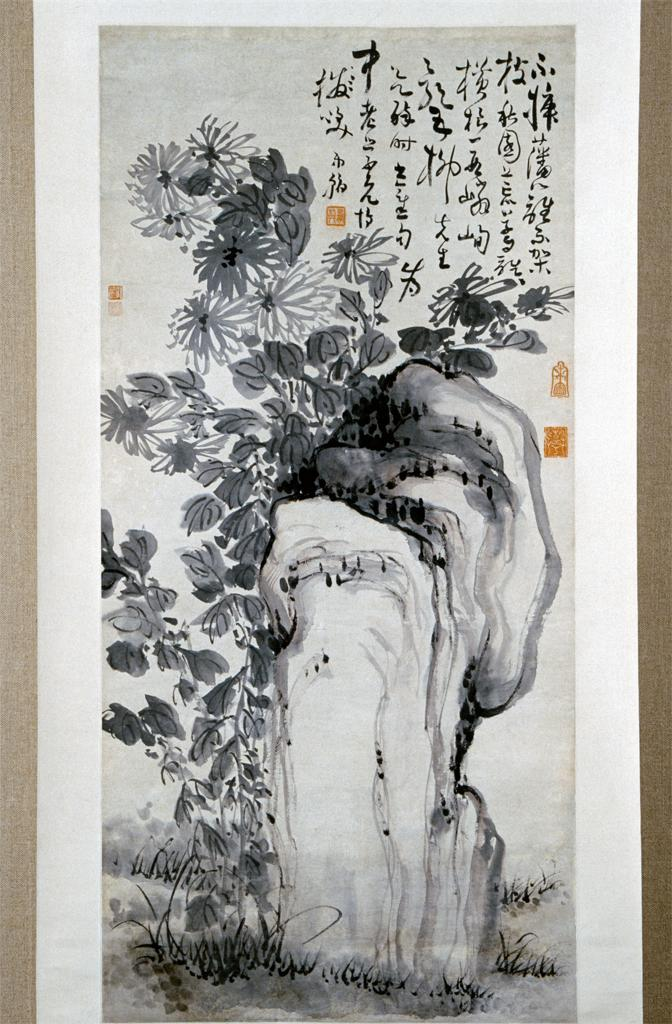 Image of Chrysanthemums by a Rock